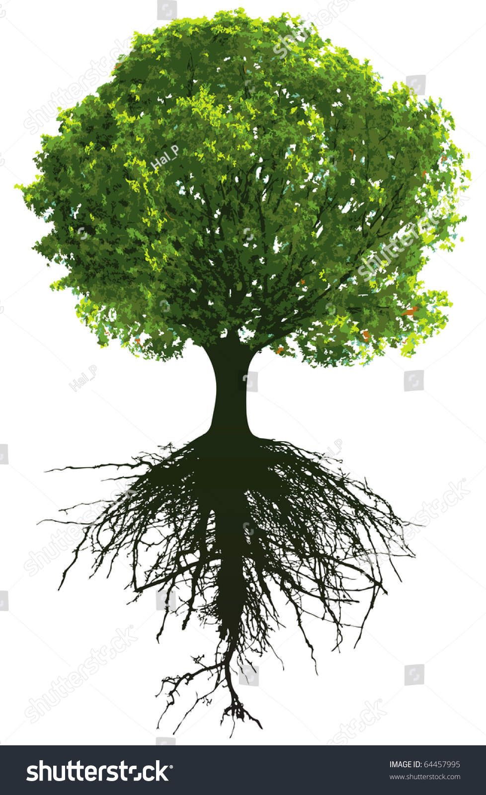 Vector Illustration Tree: Trees Roots This Image Vector Illustration Stock Vector