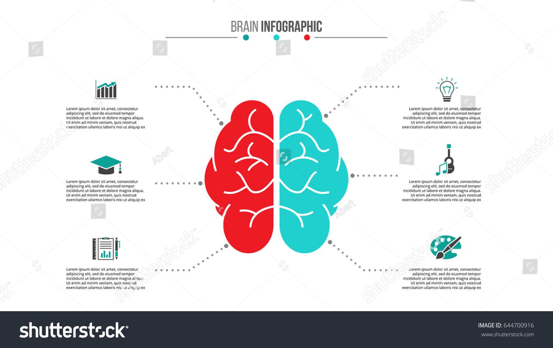 Infographic creative design vector set 15