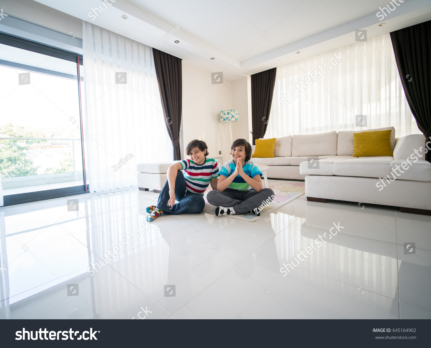 Happy Brothers Living Room Hotel Apartment Stock Photo 645164902 ...