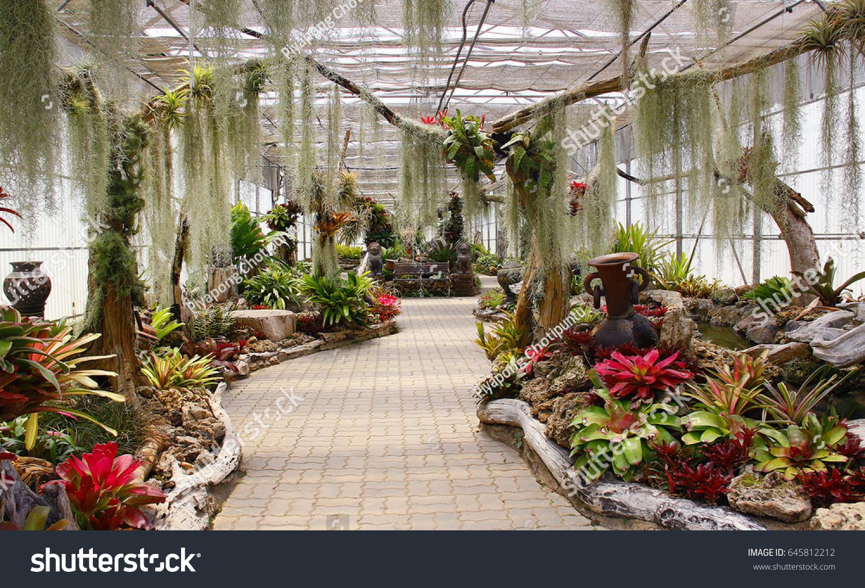 tropical garden   EZ Canvas