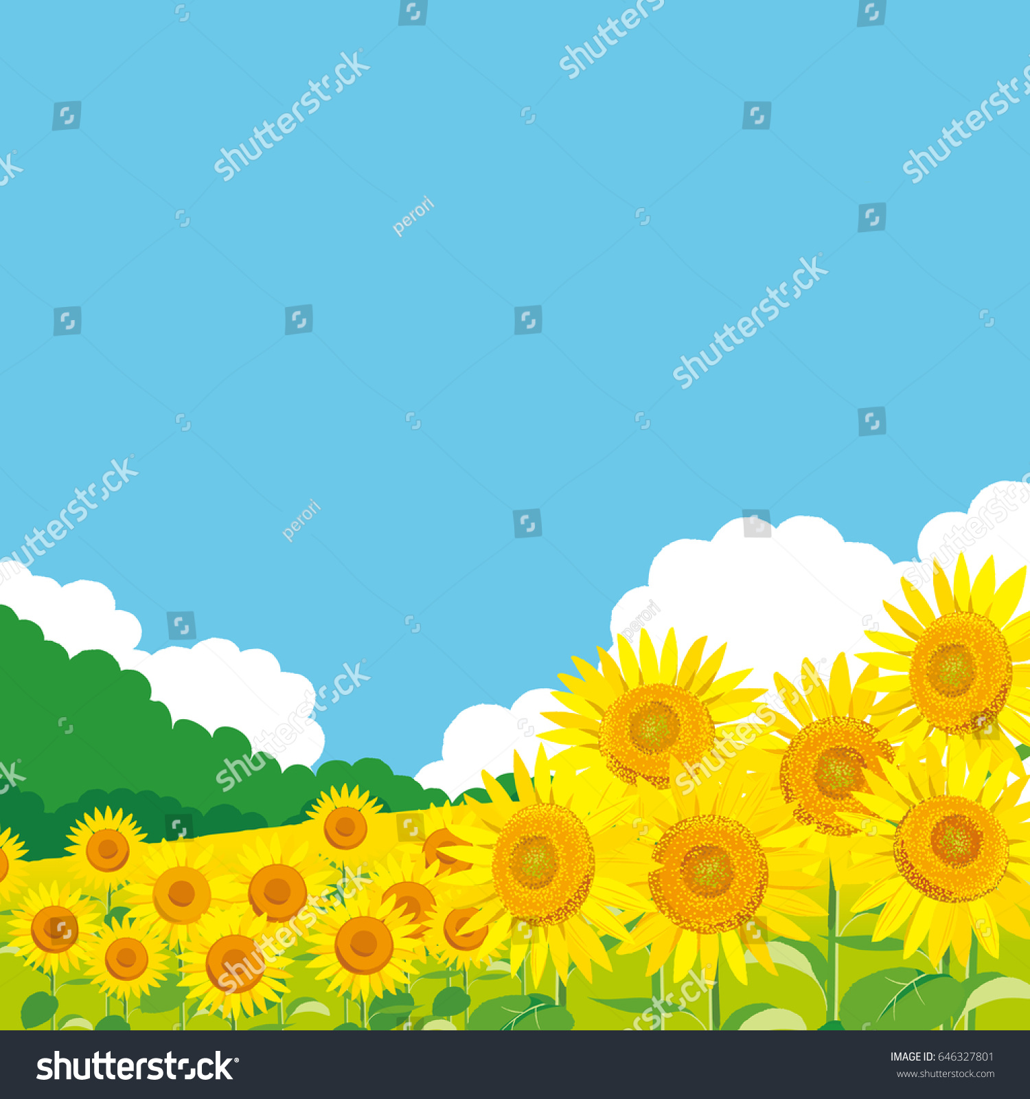 vector illustration wallpaper background landscape sunflowers stock