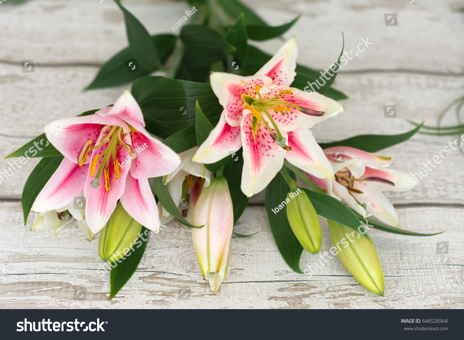 Beautiful pink lily flowers on wooden stock photo edit now beautiful pink lily flowers on wooden background with space for text perfect image for izmirmasajfo