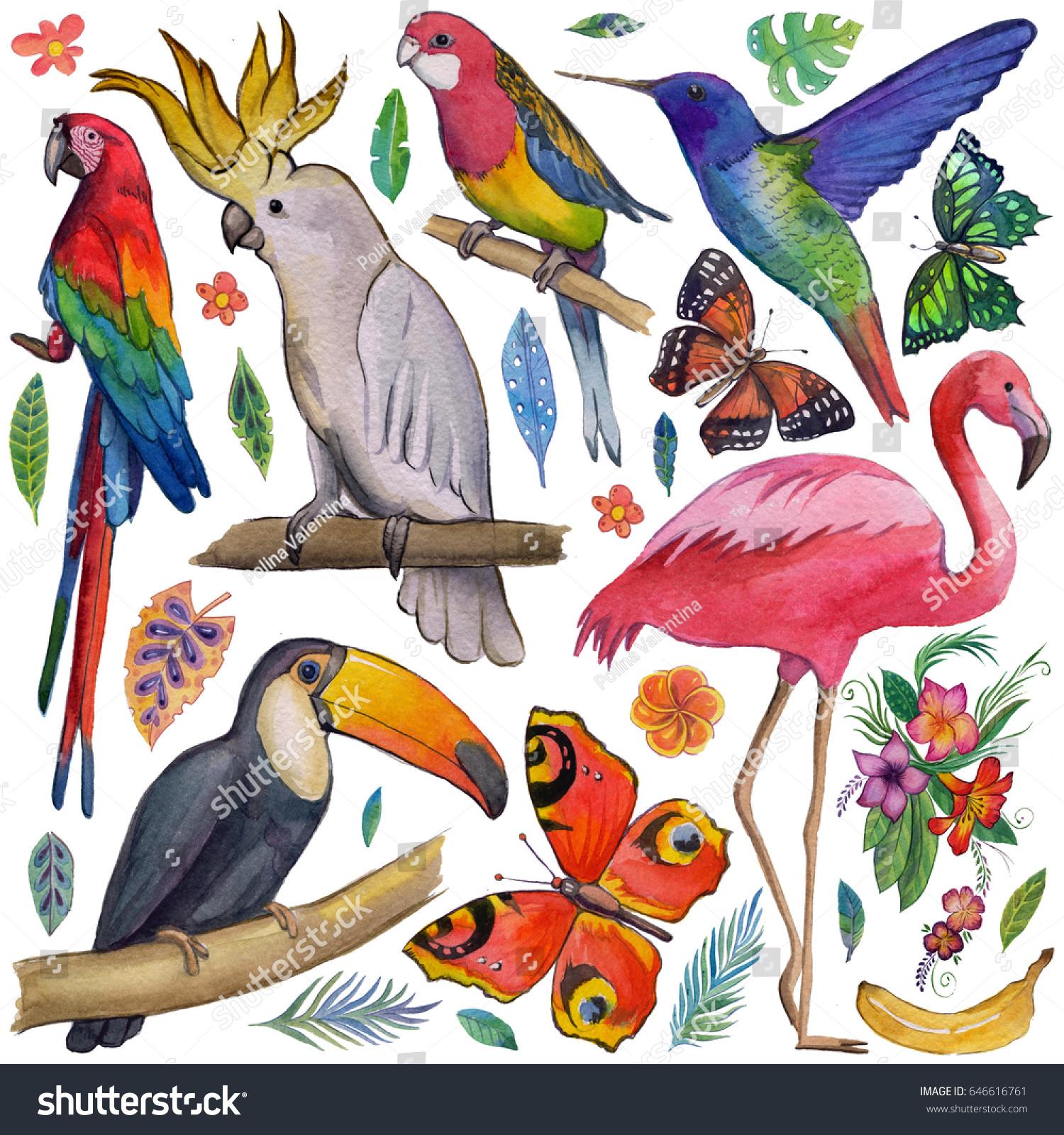 Tropical Summer Birds Toucan Parrot Exotic Flower Garden House Yard Flag