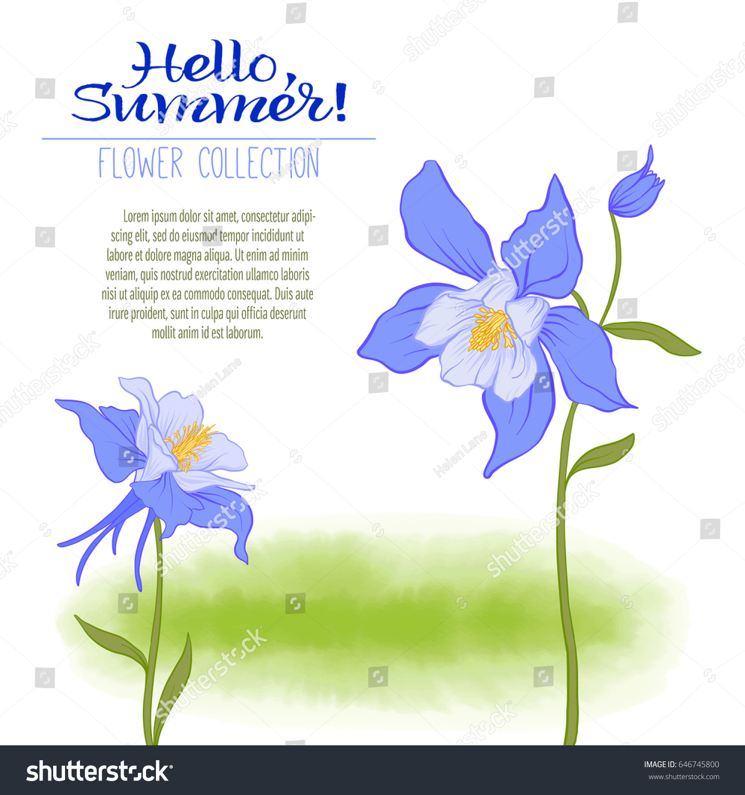 Columbine flower on green watercolor background stock vector a columbine flower on a green watercolor background the flowers in the botanical style izmirmasajfo