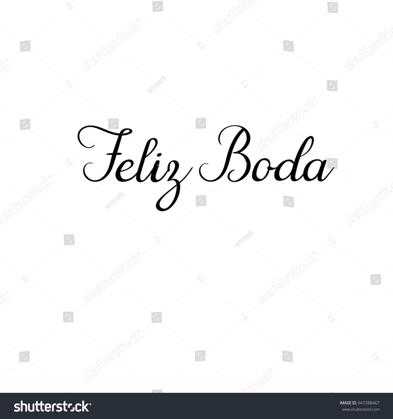 Happy Wedding In Spanish Feliz Boda Hand Lettering Greeting Card