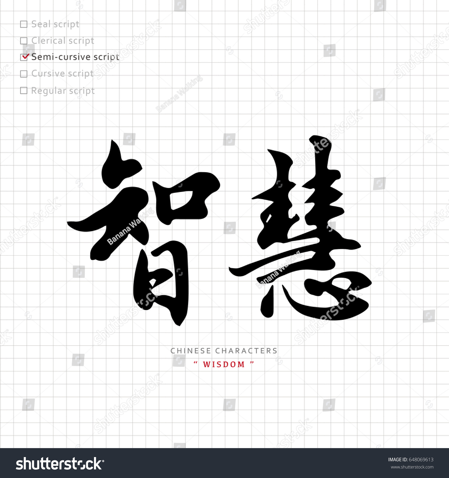 Vector chinese characters calligraphy hieroglyph translation stock vector chinese characters calligraphy hieroglyph translation meaning wise buycottarizona