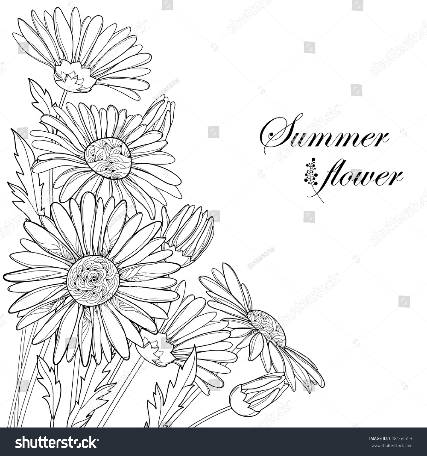 Vector bouquet with outline chamomile flowers bud and leaf isolated id 648164653 izmirmasajfo