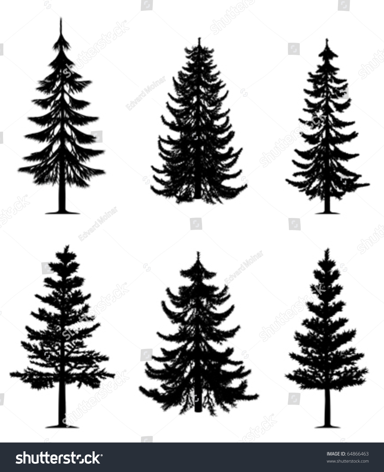 pine trees collection vector stock vector 64866463 vector pine trees silhouettes free pine trees vector silhouette