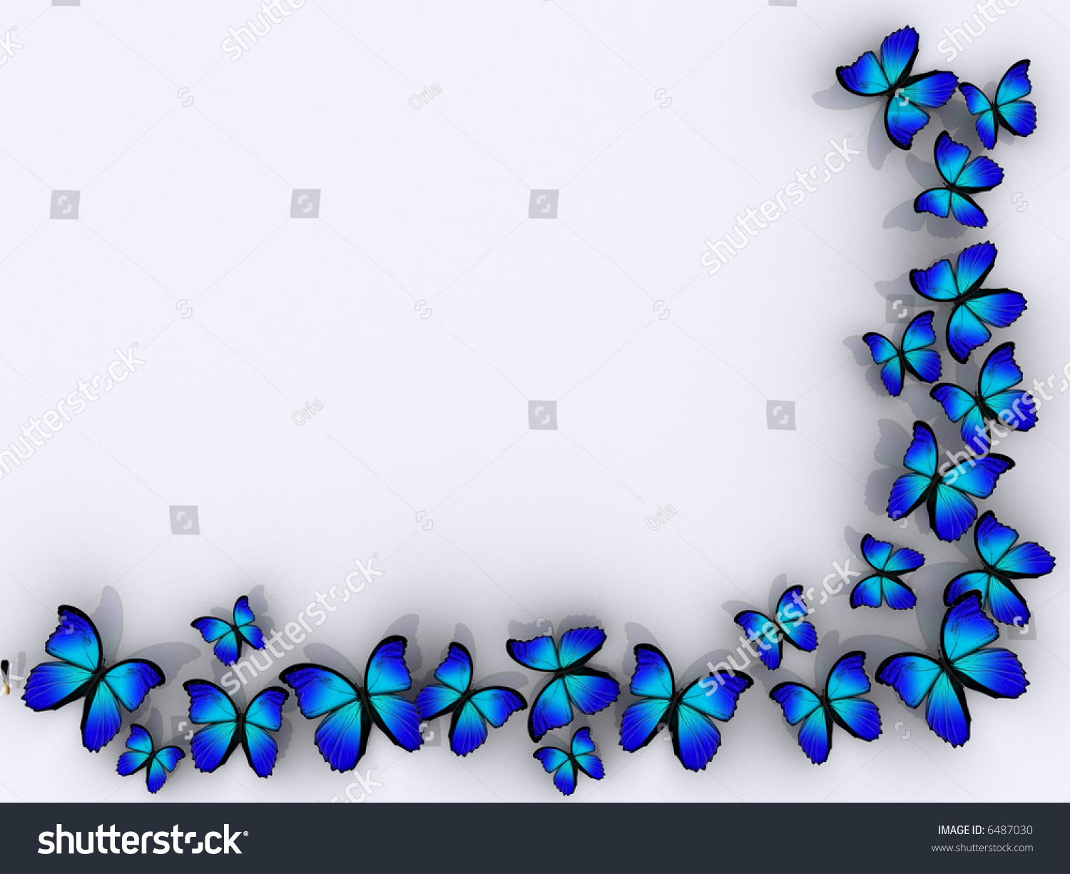 butterfly frame on white background rendered in 3d