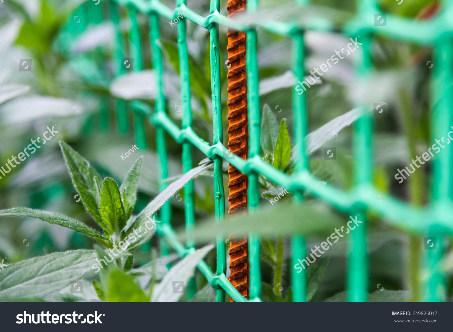 Green Mesh Netting Rusty Reinforcement Among Stock Photo