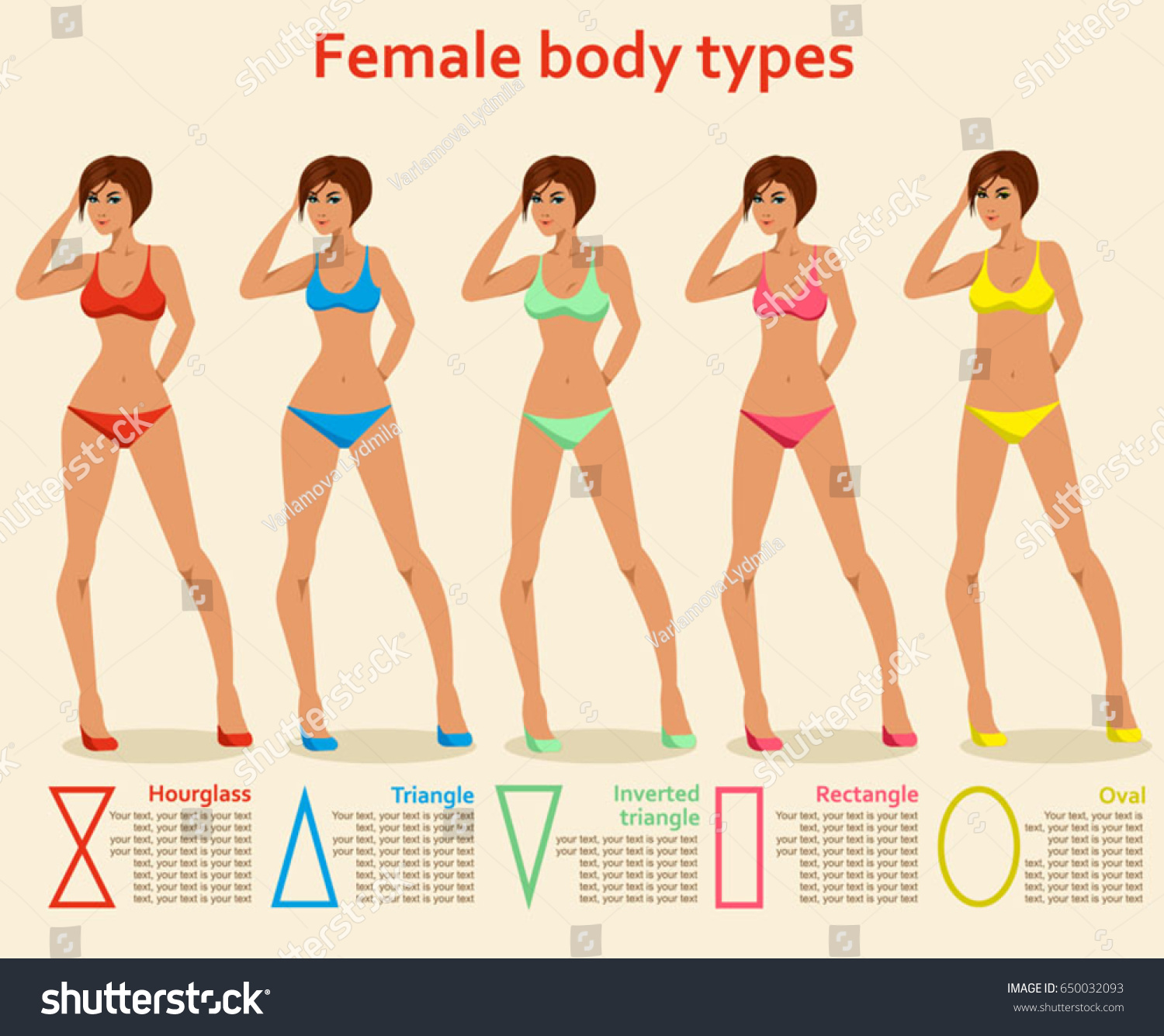 2306d8bfda5 Vector illustration of women s figures. Different body types. Fashion  Figures