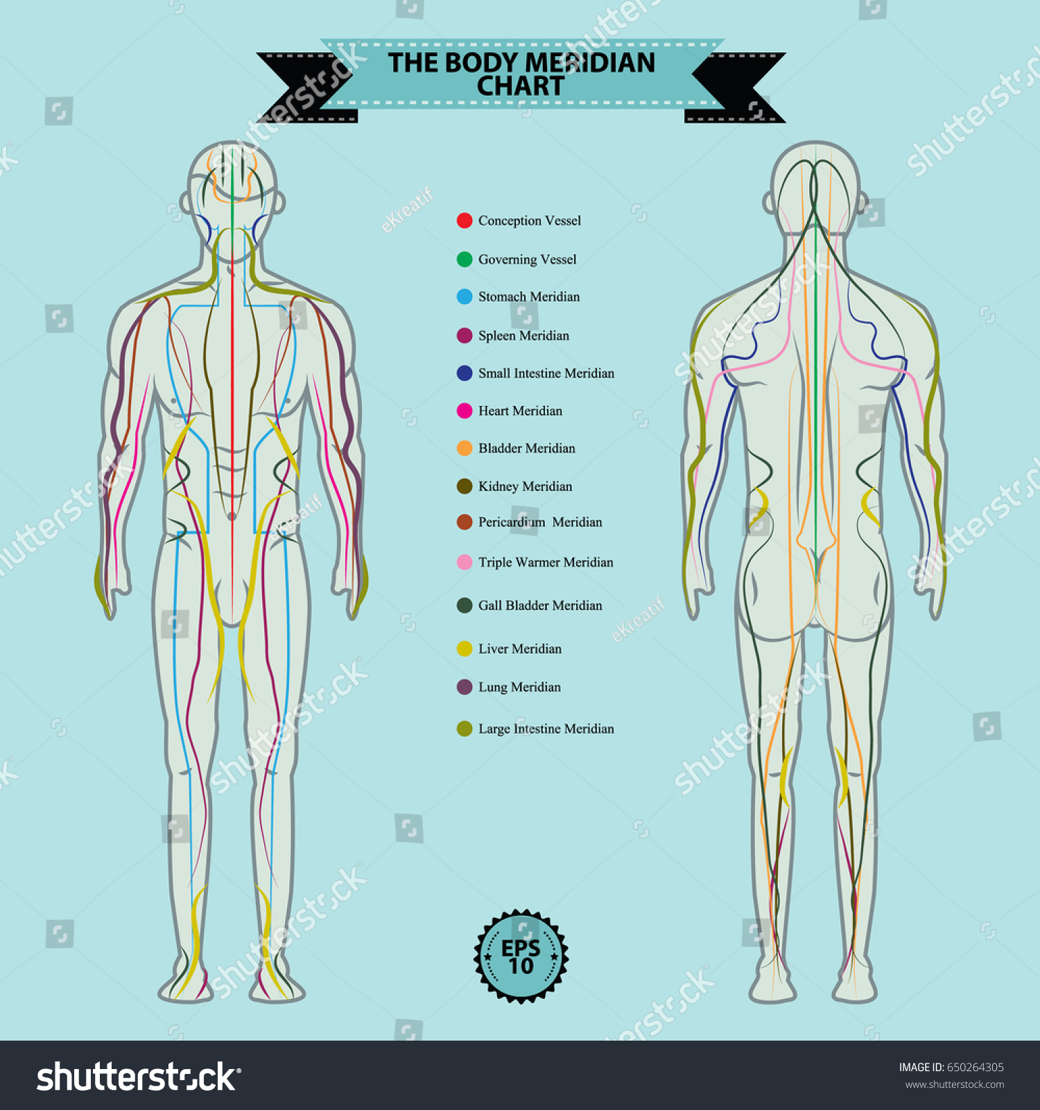 Reflexology Chart Body Anatomy Head Toe Stock Vector (Royalty Free ...
