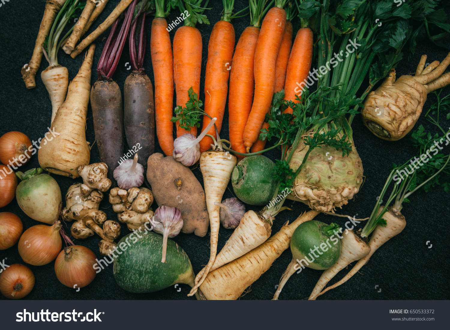Root crops, carrots, parsley root, turnip, onion, garlic, Jerusalem artichoke, horseradish. Root crops background. Food background #650533372