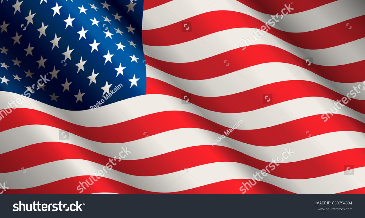 National Flag United States America Form Stock Vector 650754394 ...