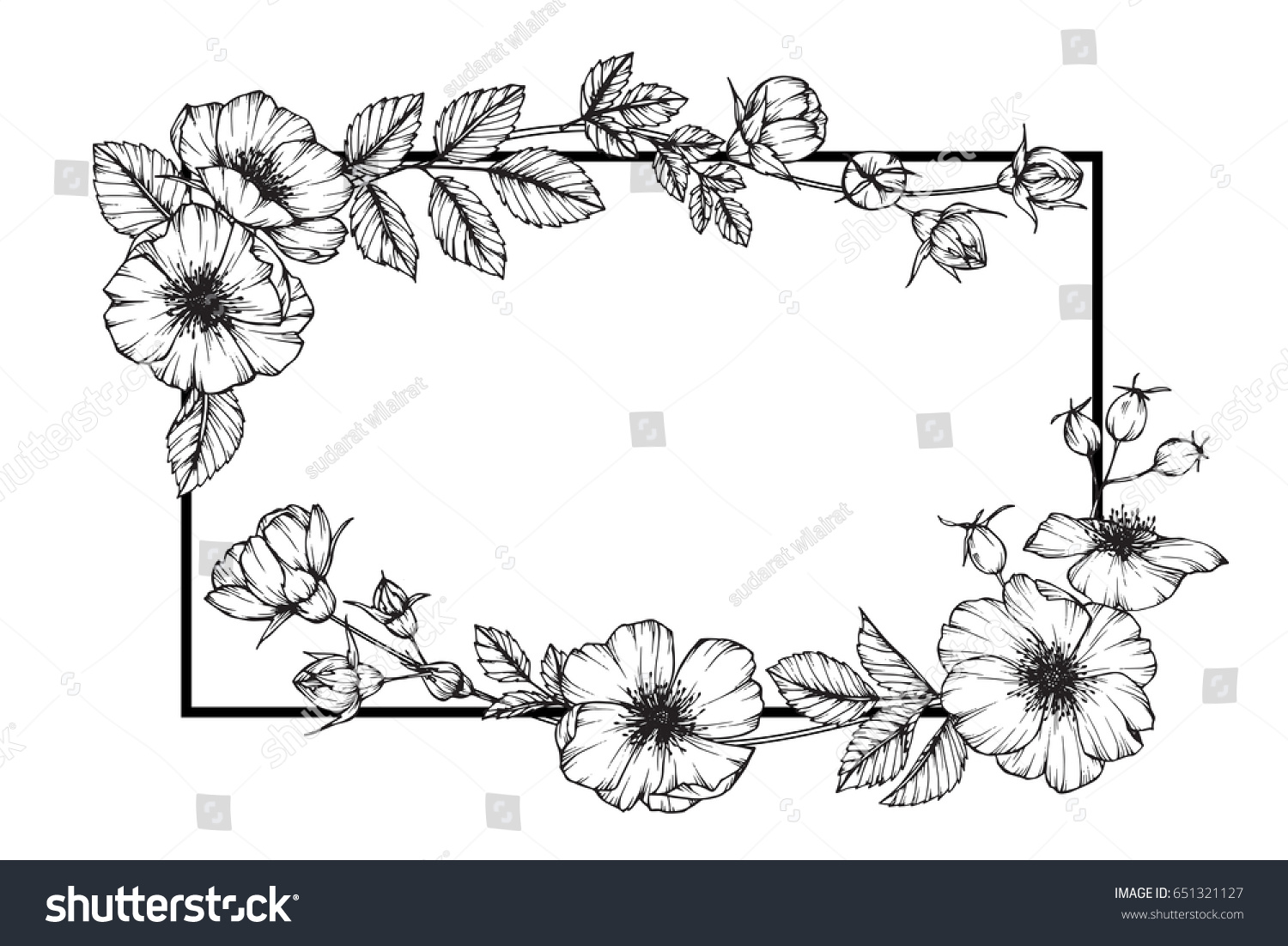 Flower Frame Rose Floral Drawing Sketch Stock Vector Royalty Free
