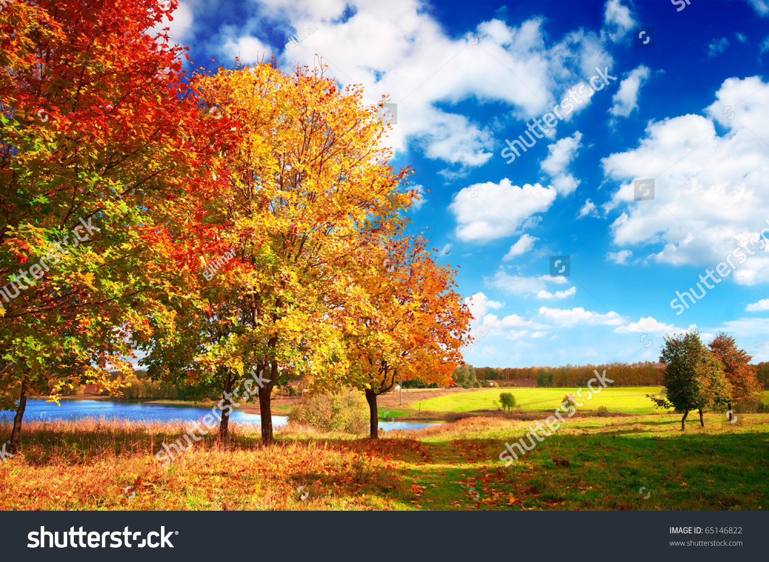 Beautiful Autumn Landscape At The Morning Park Stock Photo ...