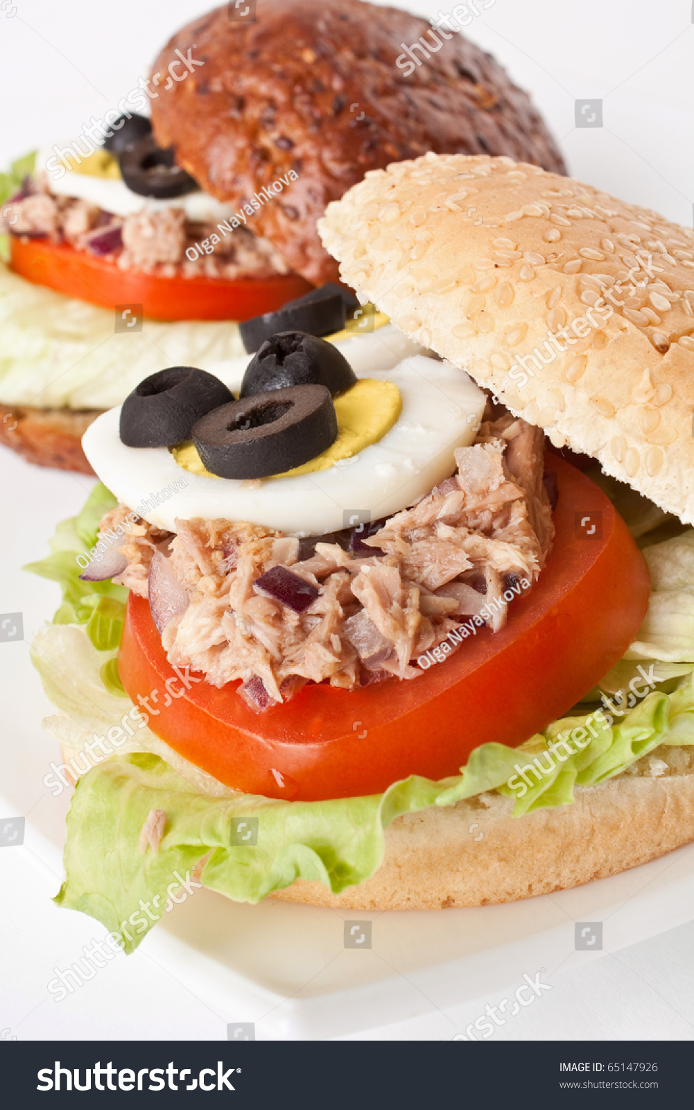 Mediterranean tuna and egg sandwich stock photo 65147926 for Tuna and egg sandwich