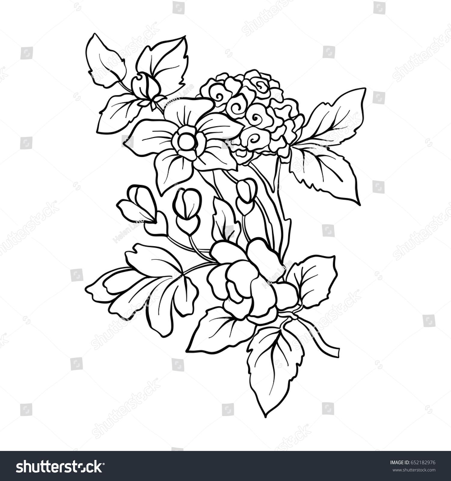 Outline vintage flowers bouquet or pattern ez canvas id 652182976 izmirmasajfo