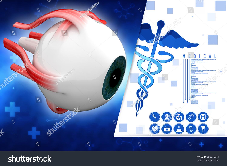 3 D Rendering Human Eye Structure Stock Illustration 652210351