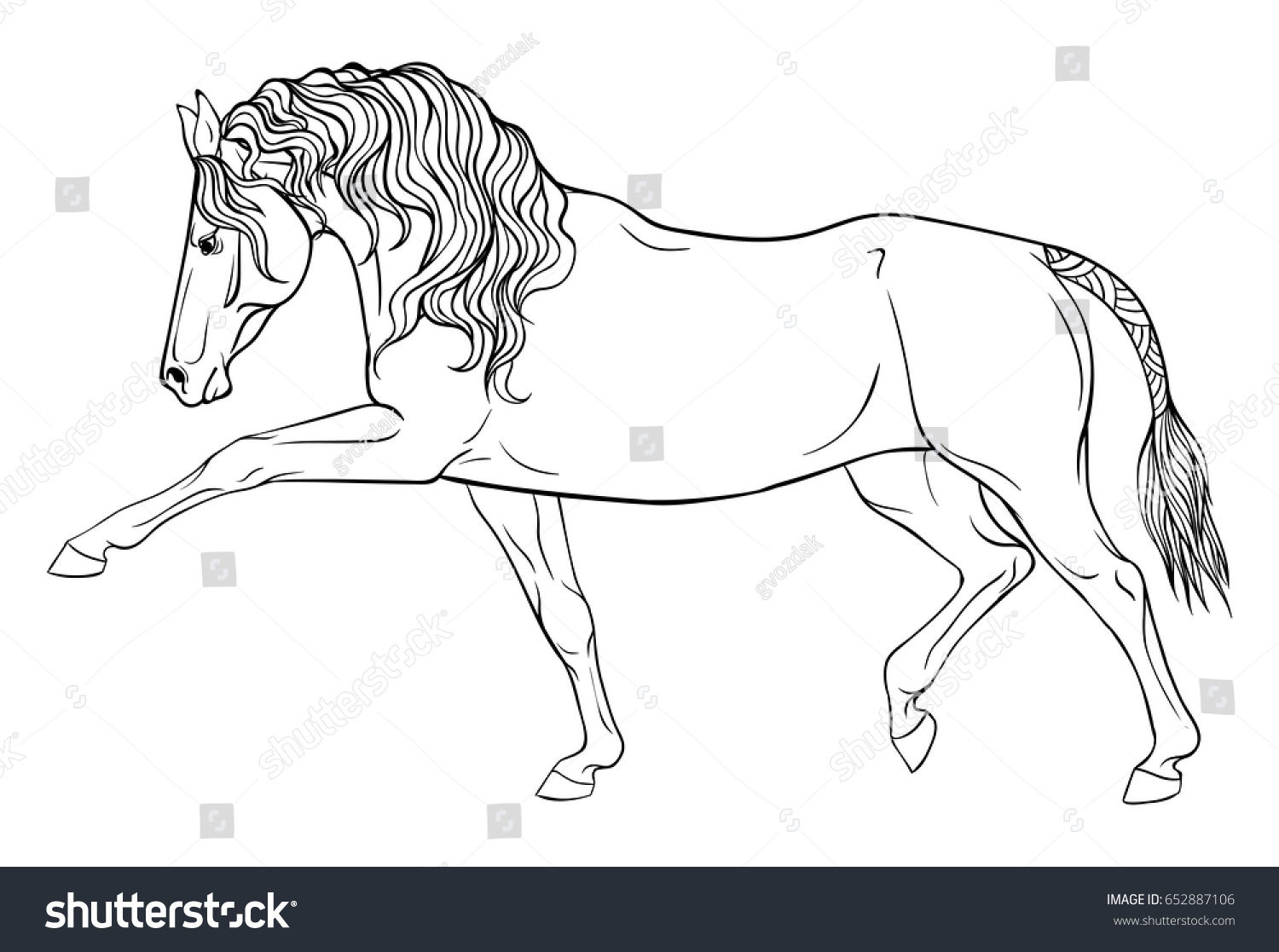 Page Coloring Equestrian Sport Horse Dressage Stock Vector Royalty Free 652887106