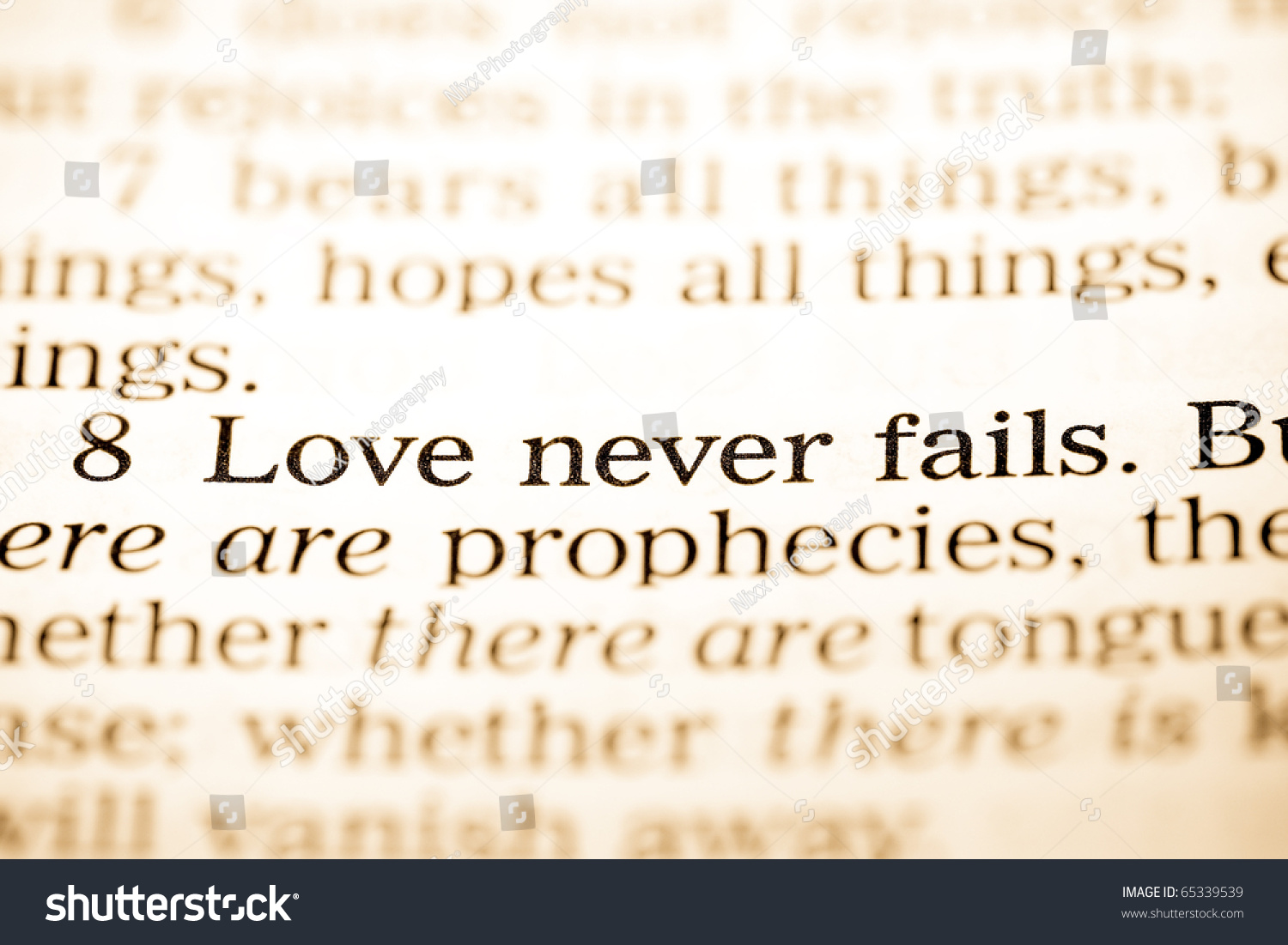 Close Up Of Old Holy Bible Book The Word Love Never Fails