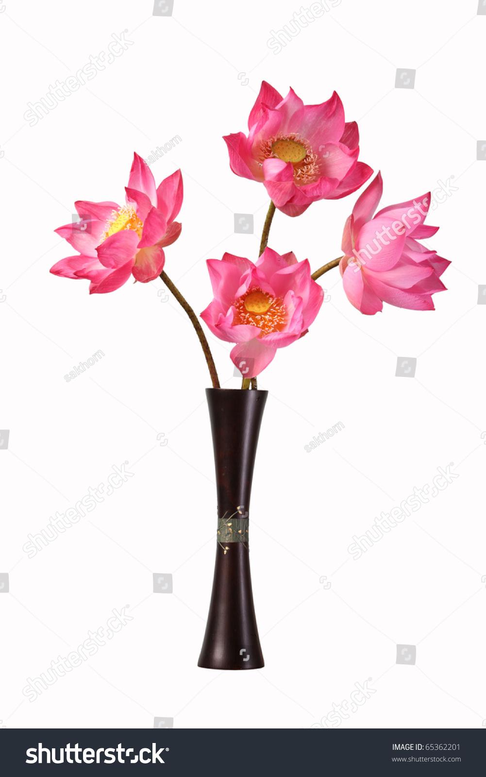 Lotus Flowers Vase Isolated White Background Stock Photo Edit Now