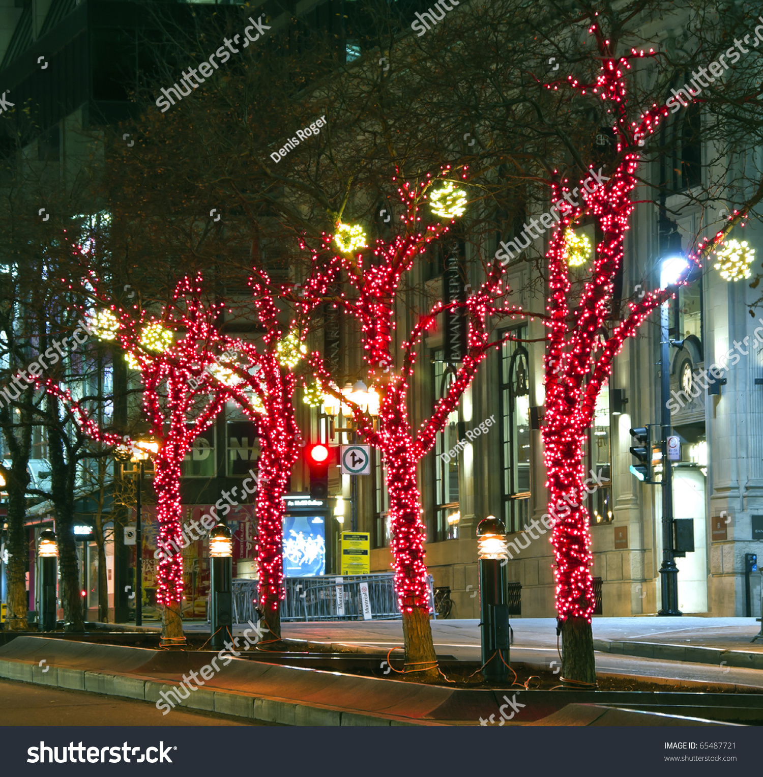 Decorative Christmas Lights Around Trees Middle Stock