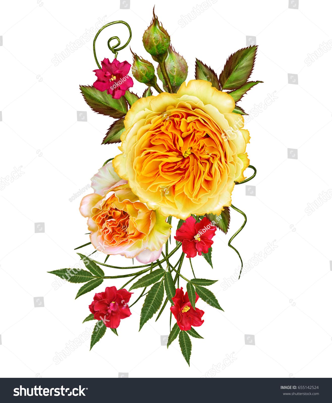 Flower Arrangement Delicate Orange Yellow Roses Stock Illustration