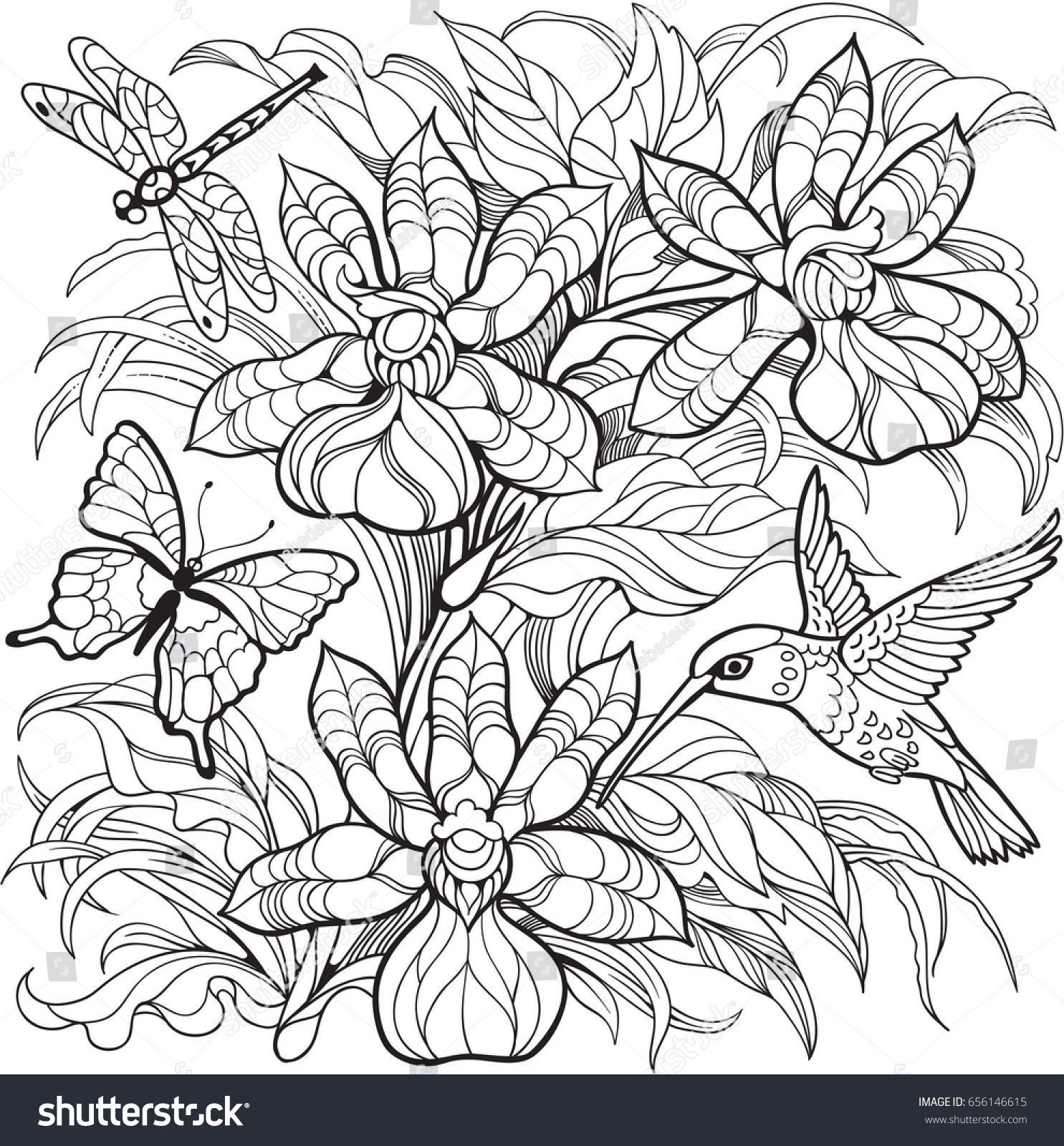 Orchid Flowers Insects Hummingbird Vector Coloring Page Stock Vector ...