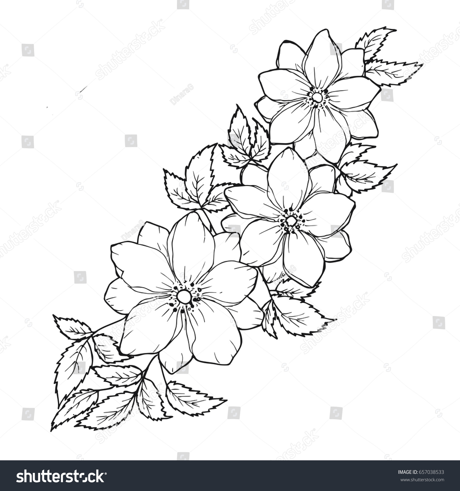 Floral Background Flowers Leaves Black White Stock Illustration