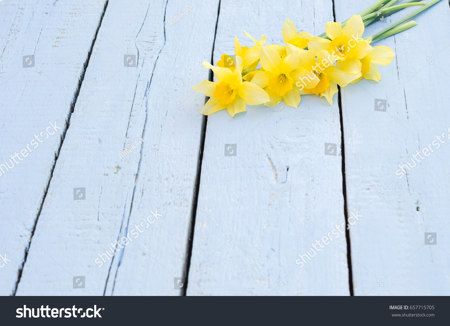 Flower Daffodil Spring Flowers Narcissus On Stock Photo Edit Now