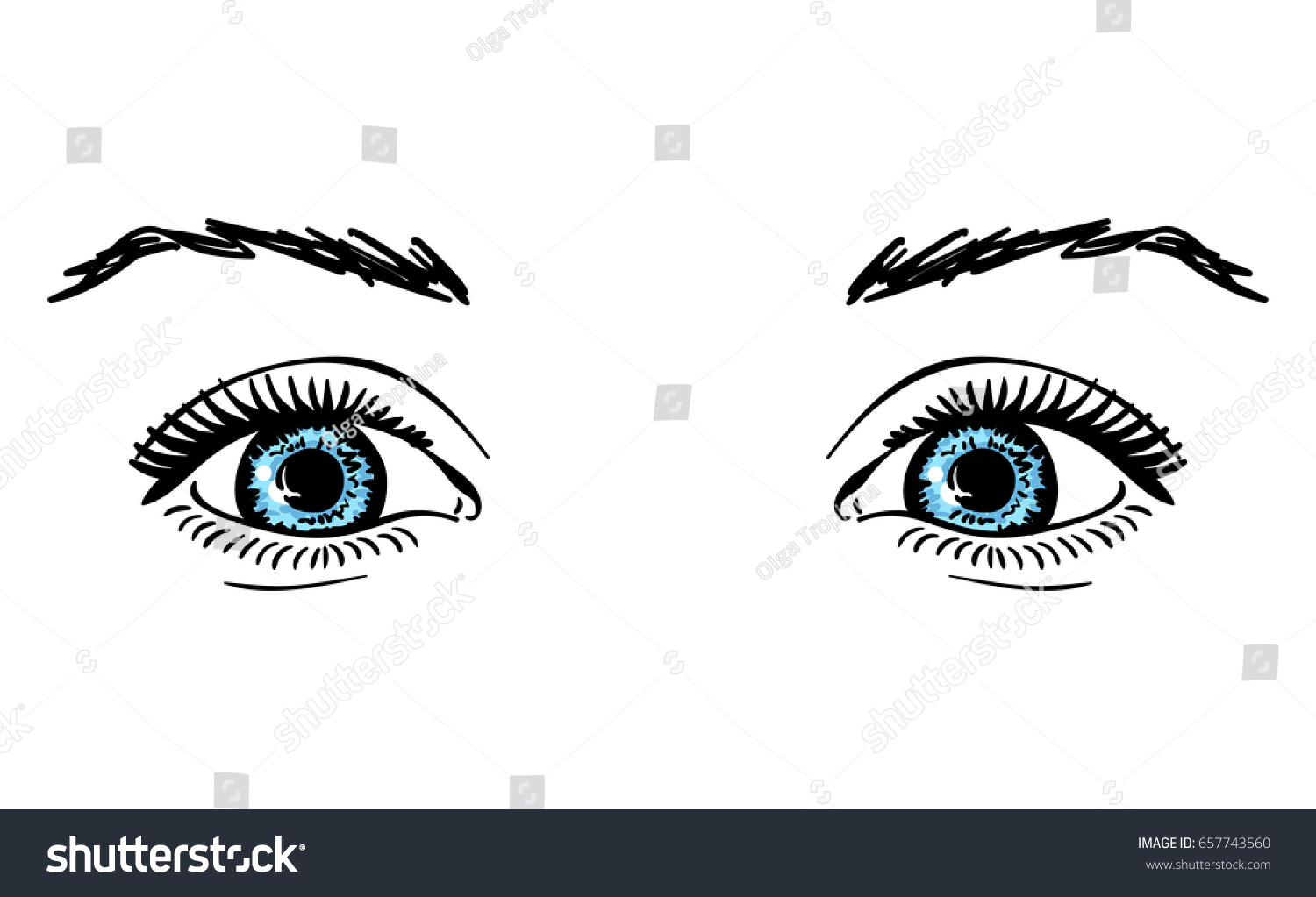 Beautiful Happy Blue Eyes Brows Isolated Stock Vector ...