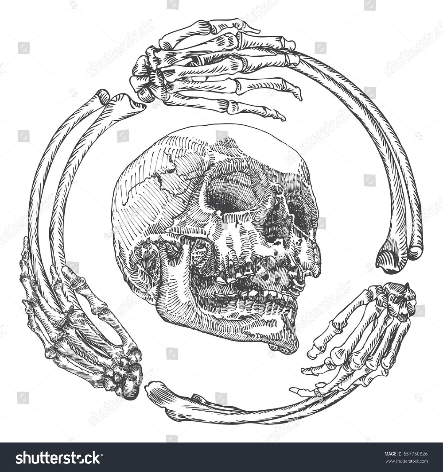 Skull Frame Made Hands Bones Occult Stock Illustration 657750826 ...