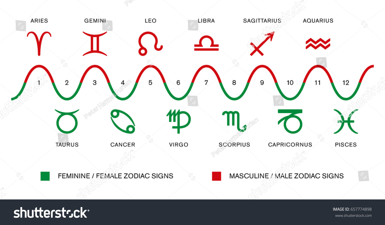 Polarity Zodiac Signs Masculine Male Feminine Stock Vector ...