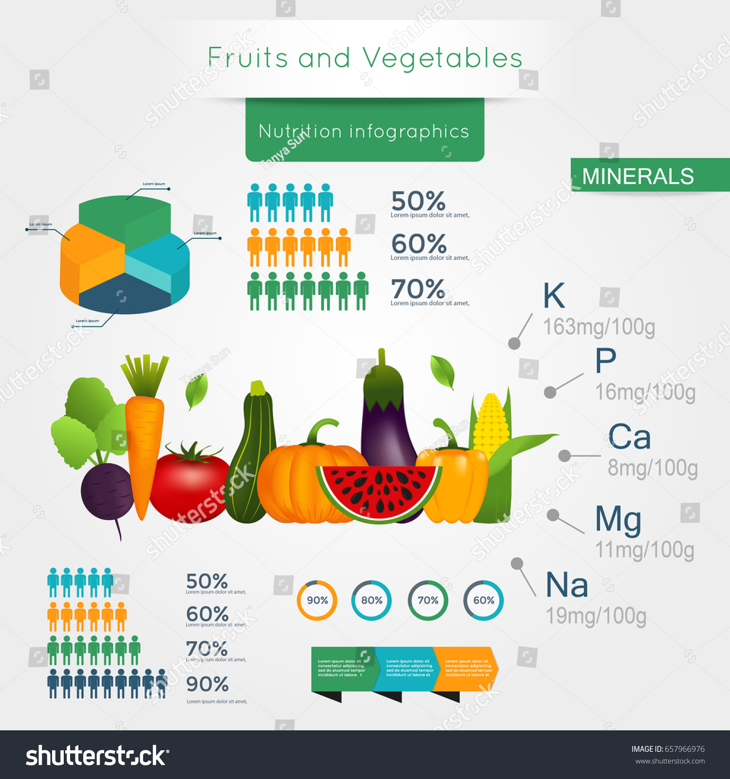 healthy vegetables infographics chart graph quality stock vector