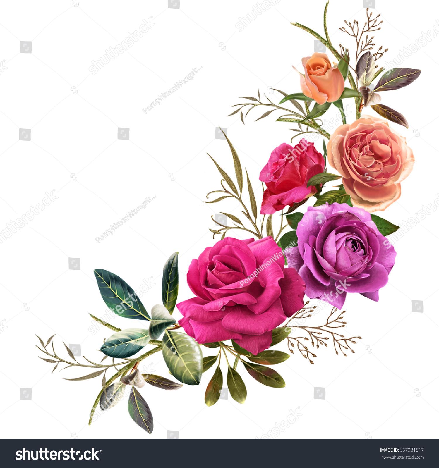 Illustration Beautiful Flower On White Background Stock Illustration