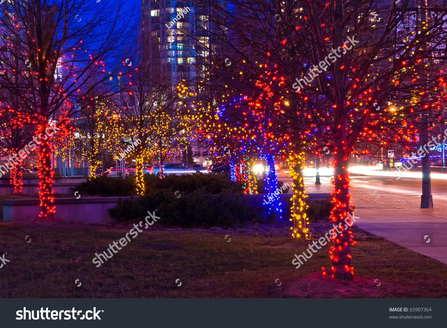night shot of trees on street decorated with multicolor christmas lights garlands - Multicolor Christmas Lights