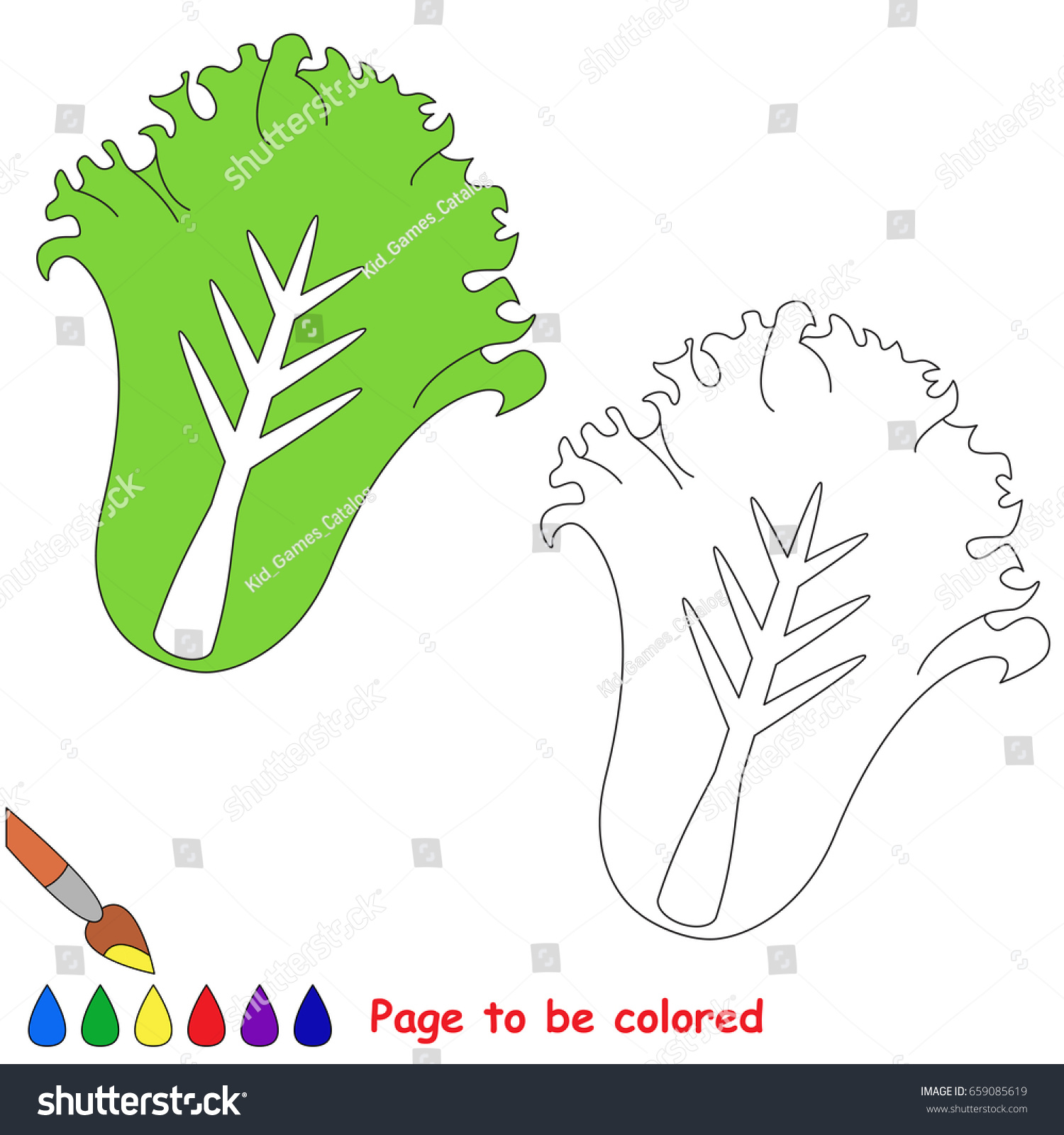Green Lettuce Be Colored Coloring Book Stock Vector HD (Royalty Free ...