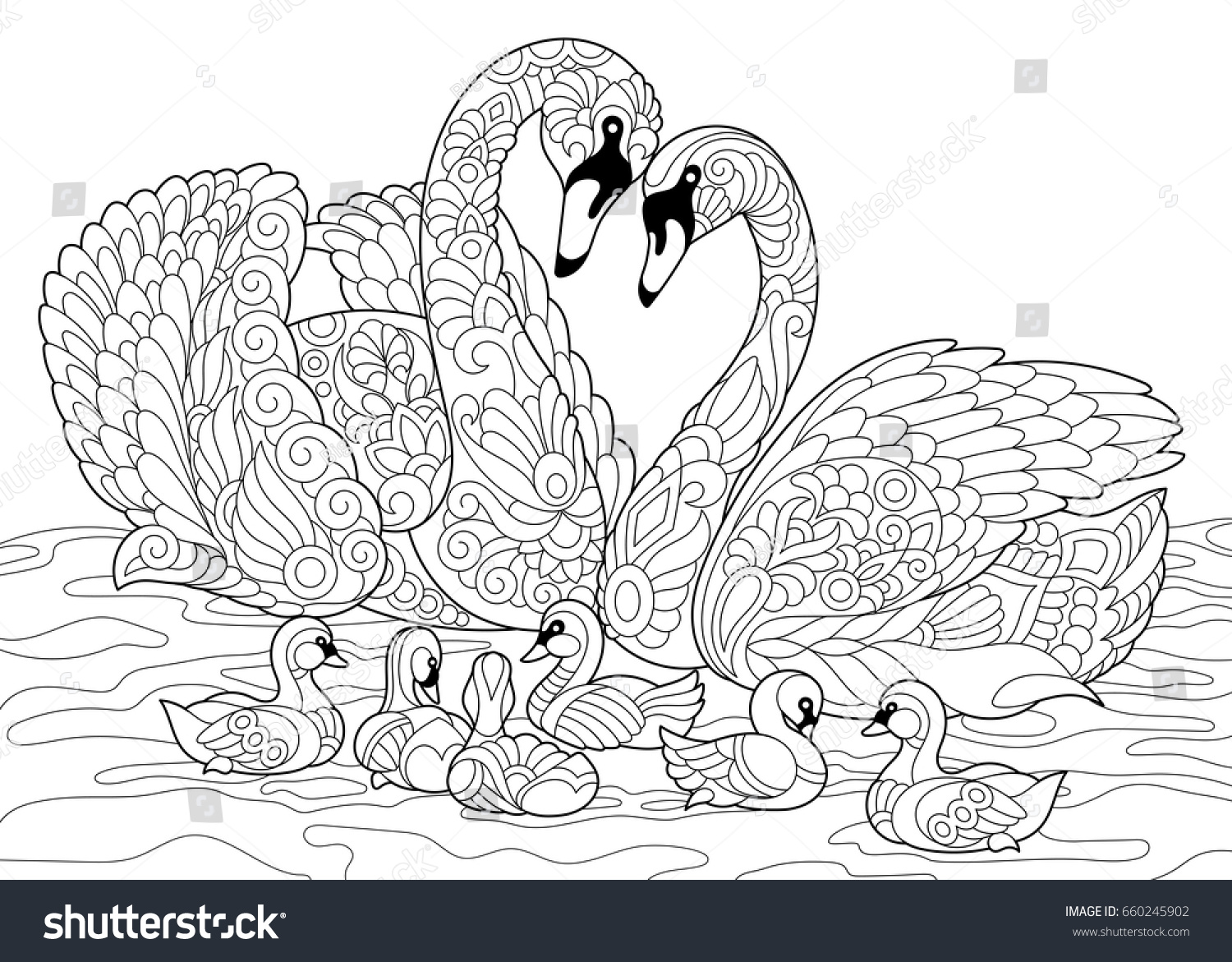 Coloring Book Page Of Swan Birds Family Freehand Sketch Drawing For Adult Antistress Colouring With
