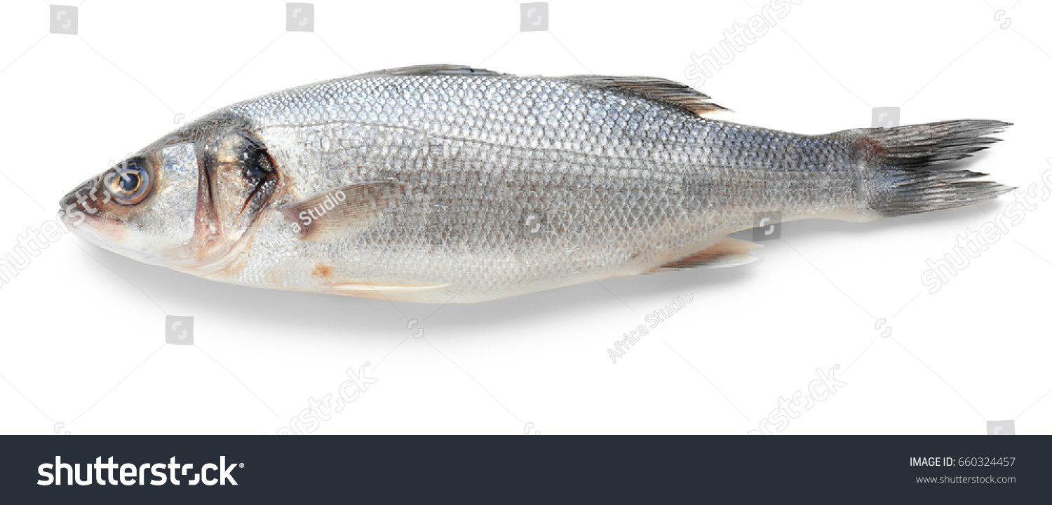 Fresh raw fish on white background
