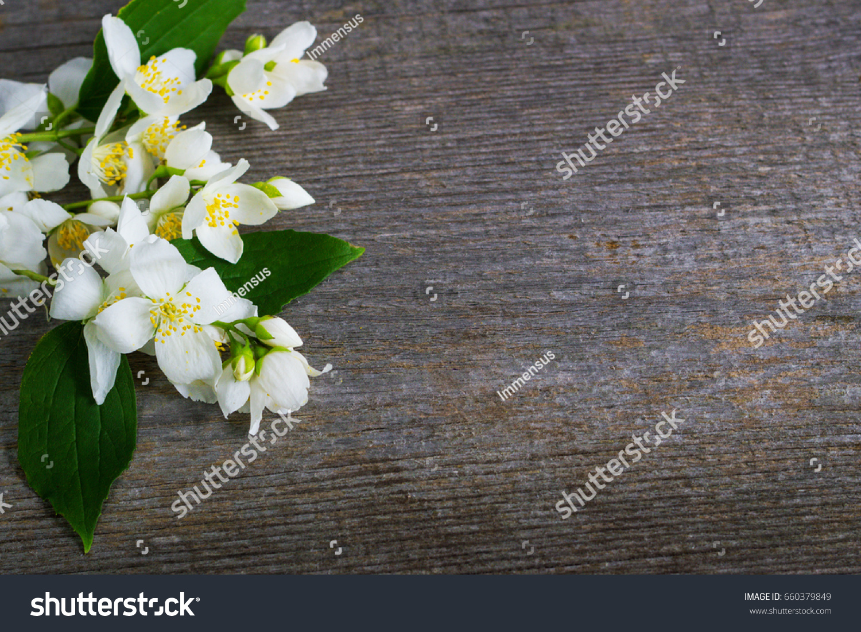 Jasmine Flower On Wooden Table Greeting Card Ez Canvas