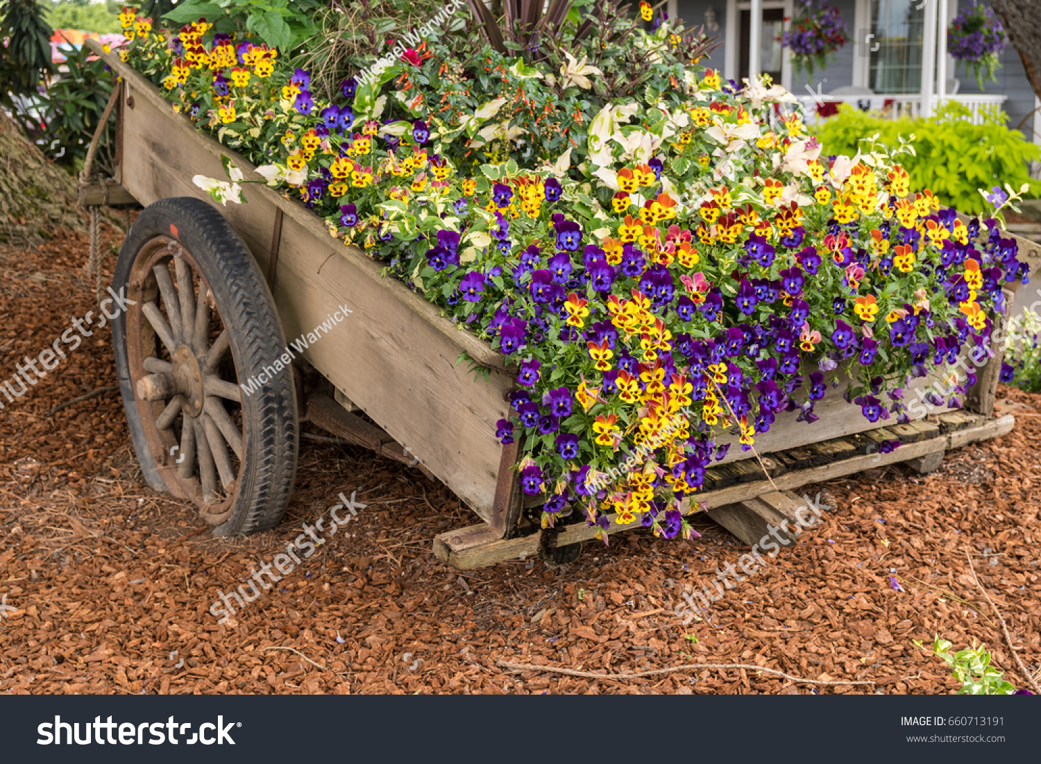 Old Wooden Garden Cart Filled Colorful Stock Photo (Edit Now ...