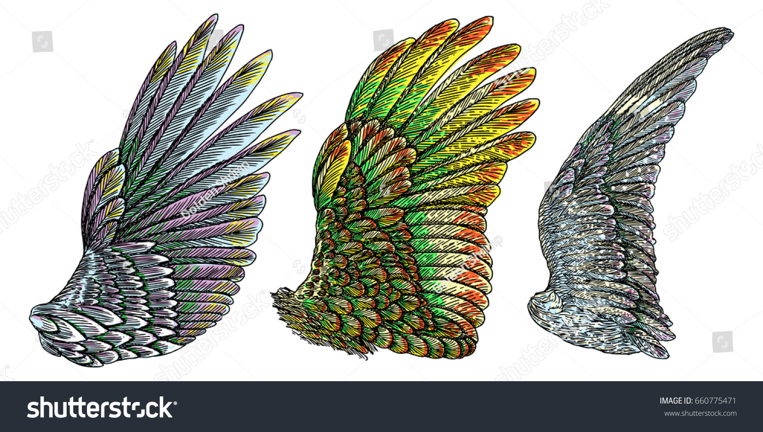 Set Colorful Bird Wings Different Shape Stock Vector 660775471 ...