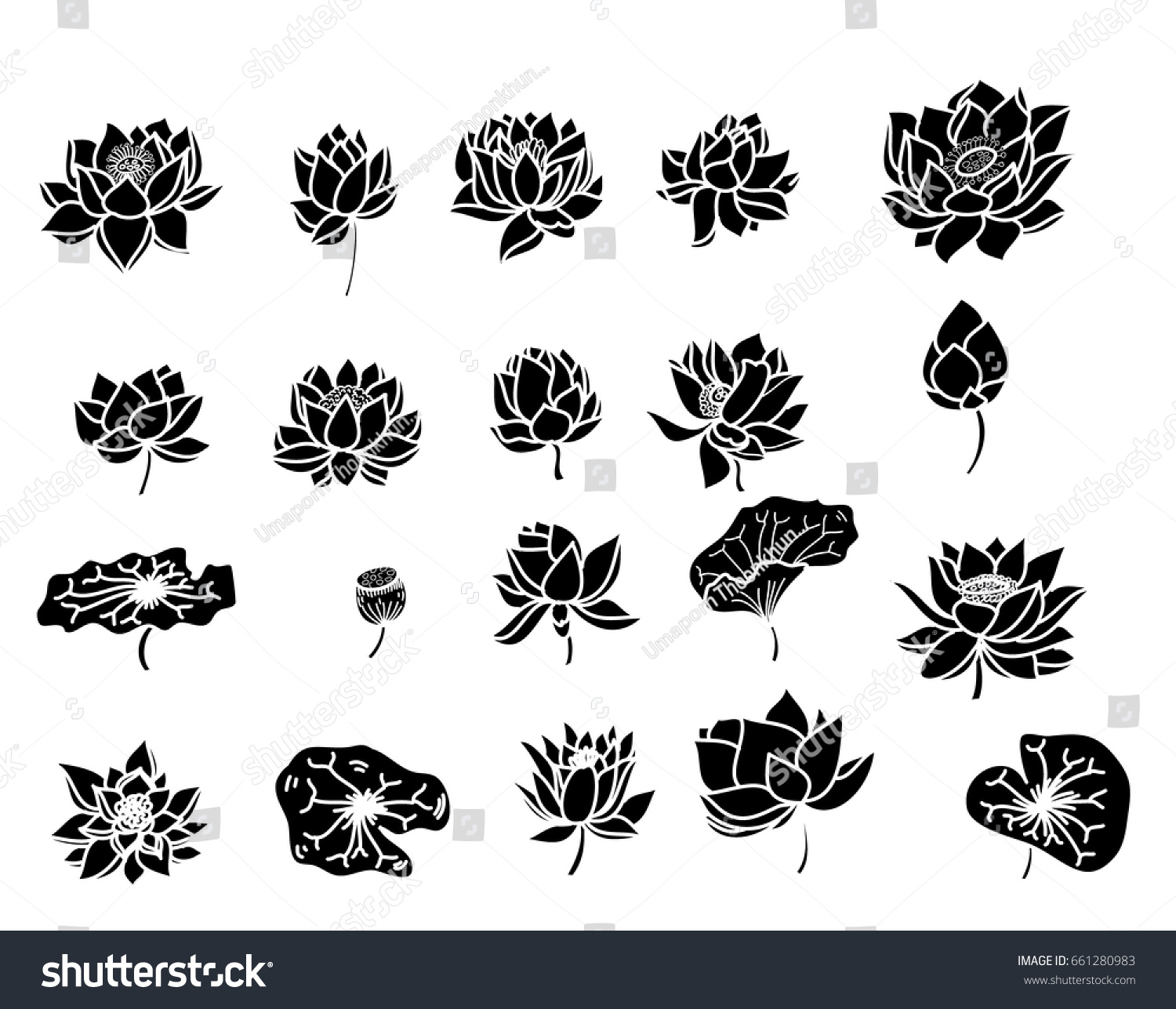 Hand Drawn Silhouette Lotus Flower Isolate Stock Vector Royalty