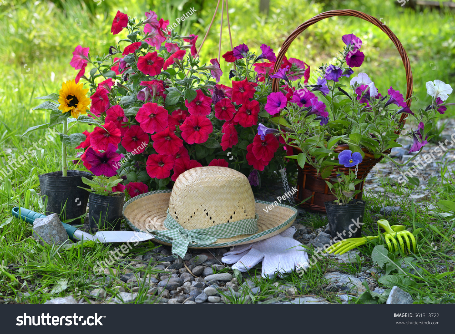 Beautiful Summer Background With Flowers, Garden Tools And Straw Hat  Against Sunny Grass Background.