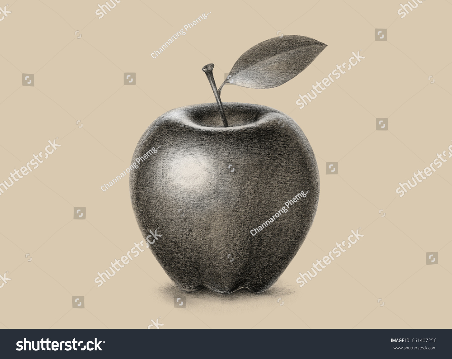 Apple pencil drawing black and white
