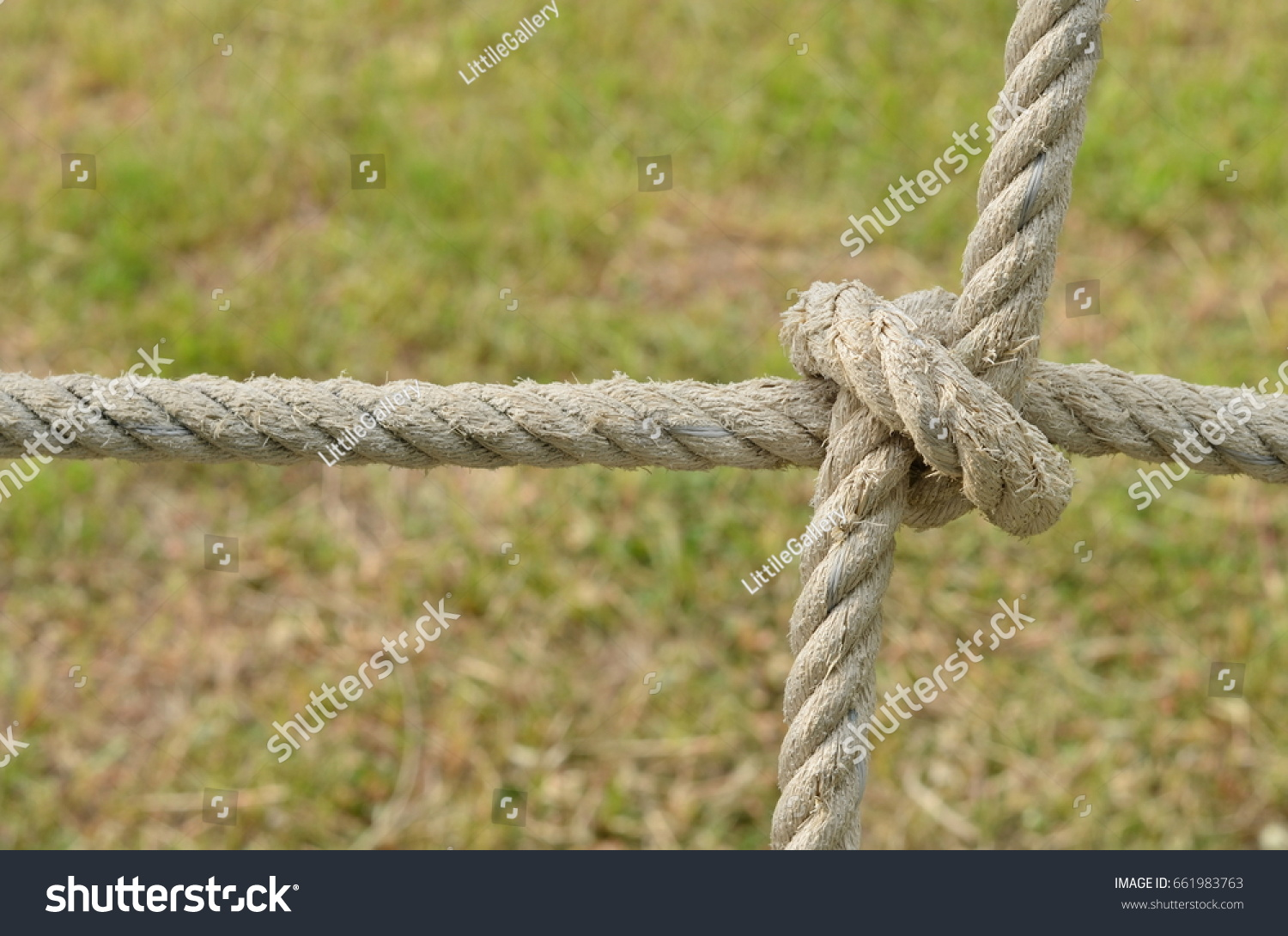 Rope knot line tied together nature stock photo 661983763 rope knot line tied together with nature backgroundas a symbol for trust teamwork or biocorpaavc Choice Image