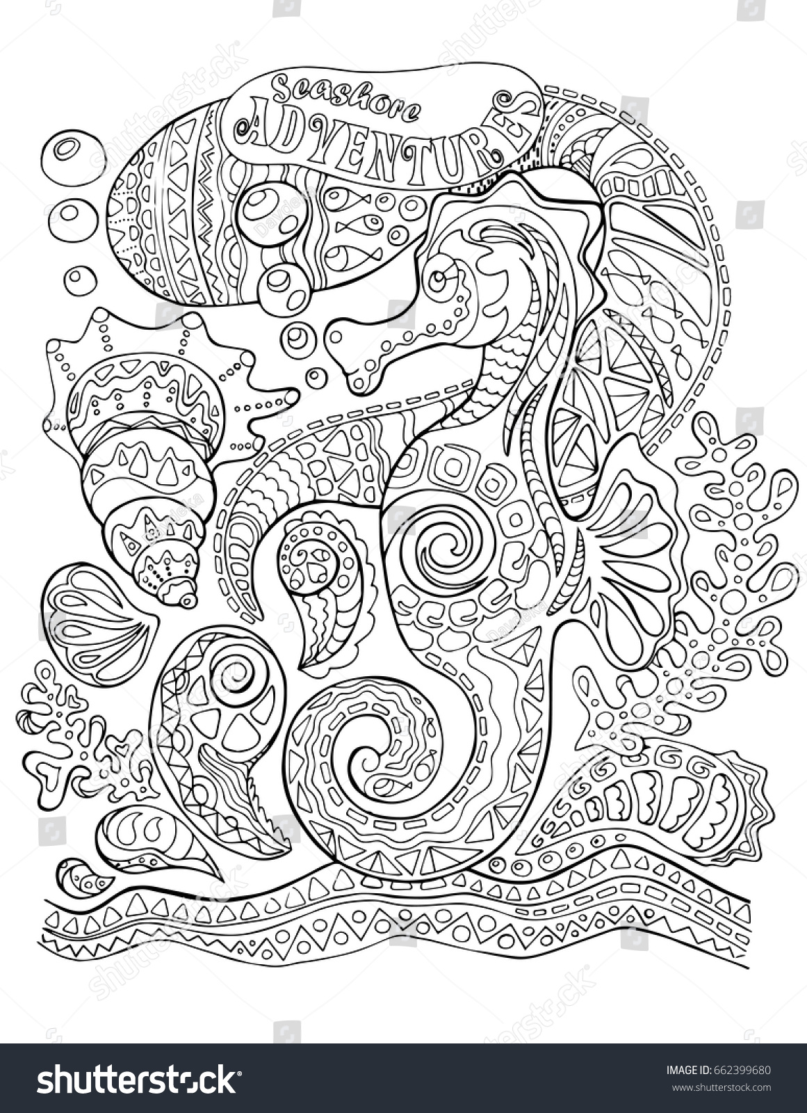 Seahorse And Sea Shells Adult Coloring Page Horse Vector Book Cover Underwater