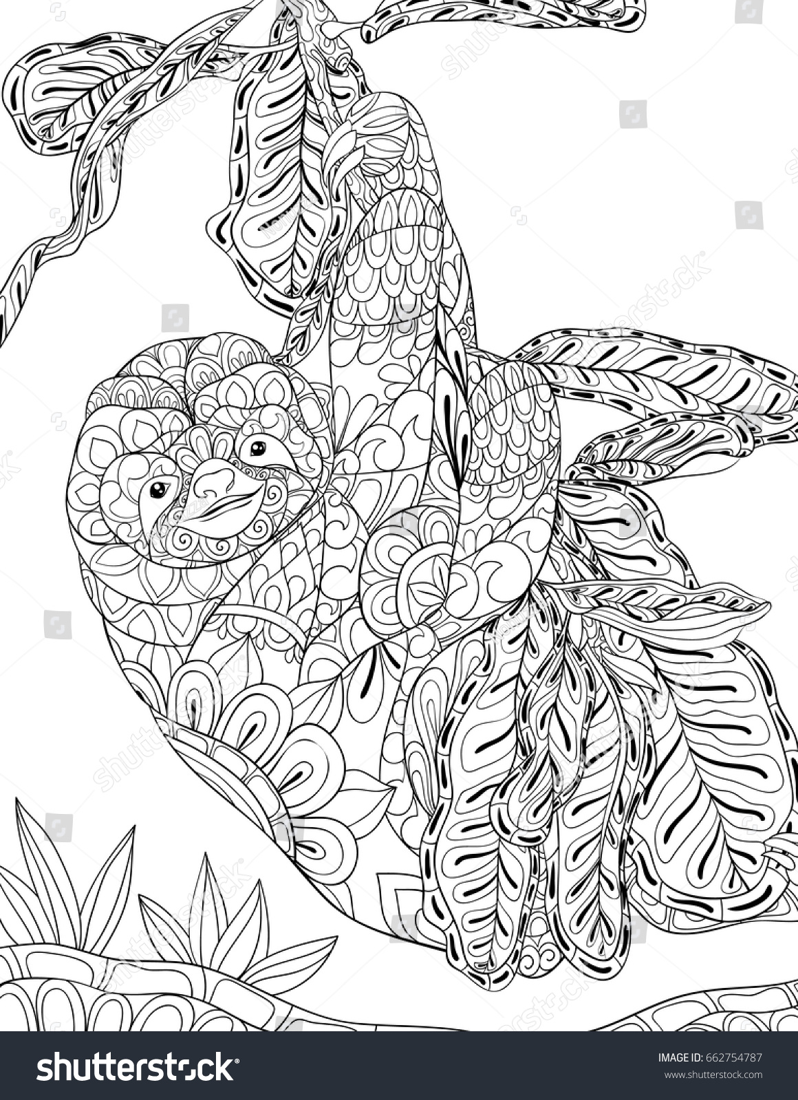 Sloth Coloring Pages For Adults Www Topsimages Com