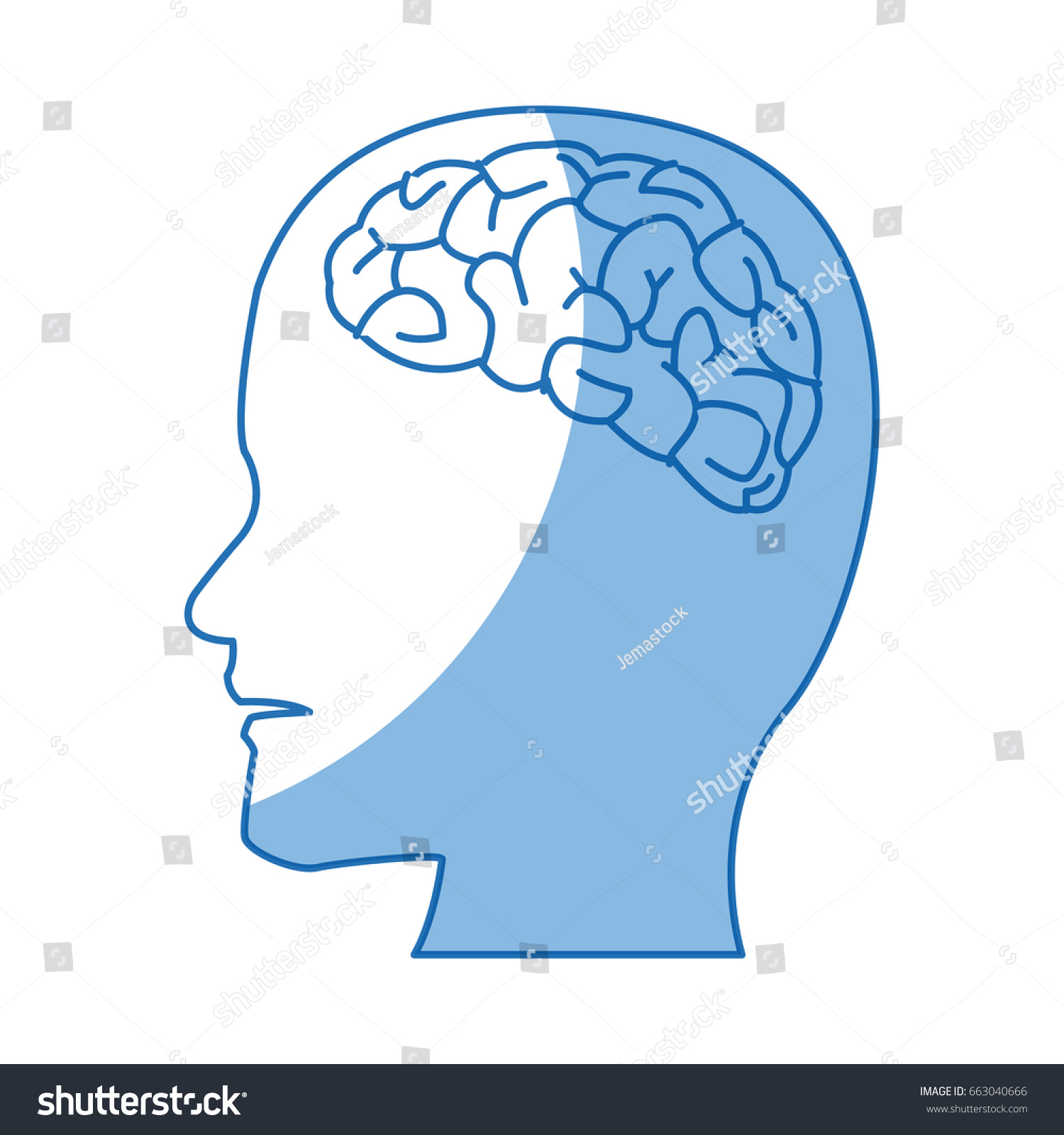Profile Human Head Brain Anatomy Stock Vector 663040666 - Shutterstock